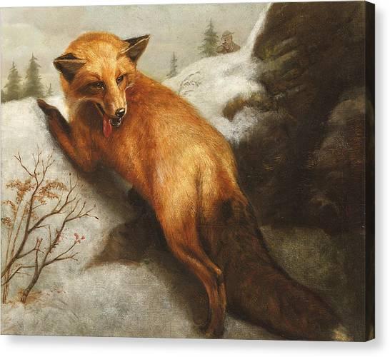 Snow Bank Canvas Print - The Red Fox by Abbott Handerson Thayer