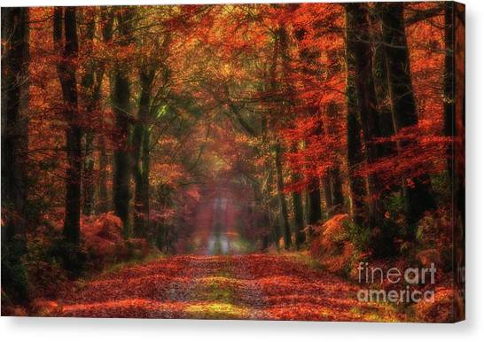 The Red Path 2 Canvas Print