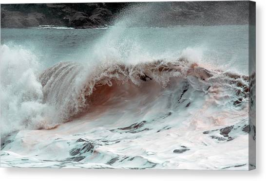 Tumbling Canvas Print - The Red Wave by Betsy Knapp
