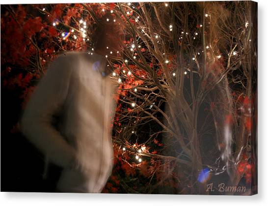 The Remains Of A Magical Memory Canvas Print