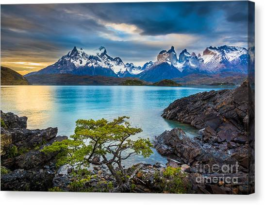 Chilean Canvas Print - The Remains Of The Day by Inge Johnsson