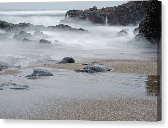 Canvas Print featuring the photograph The Revealed Shoreline by Margaret Pitcher