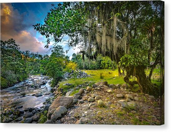 The River At Cocora Canvas Print