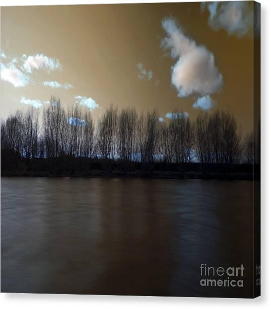 The River Of Dreams Canvas Print by Angel Ciesniarska