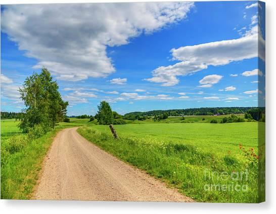 Birch Canvas Print - The Road Leads To... by Veikko Suikkanen