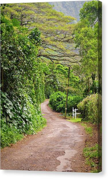 The Road Less Traveled-waipio Valley Hawaii Canvas Print