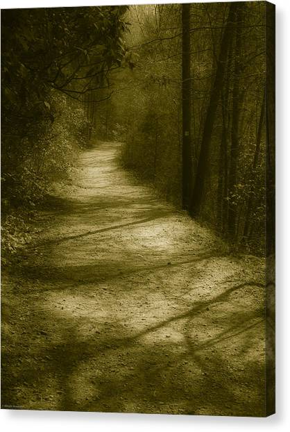 The Road To . . .  Canvas Print