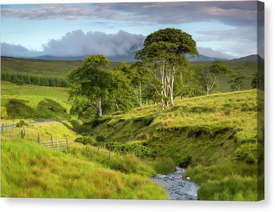 The Road To Carndonagh Canvas Print
