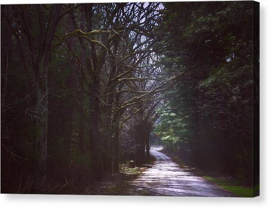 Impression Canvas Print - The Road To Somewhere by Scott Norris