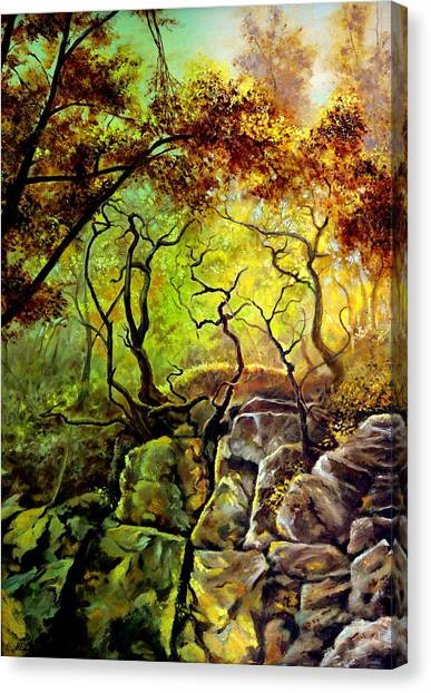 The Rocks In Starachowice Canvas Print