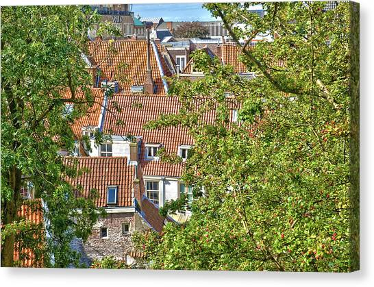 The Rooftops Of Leiden Canvas Print