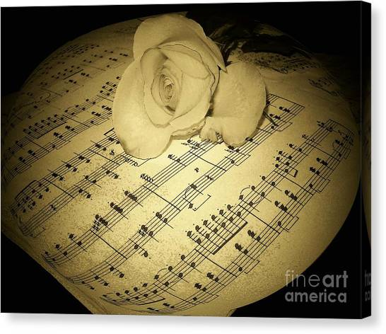 The Schubert Rose In Sepia Canvas Print