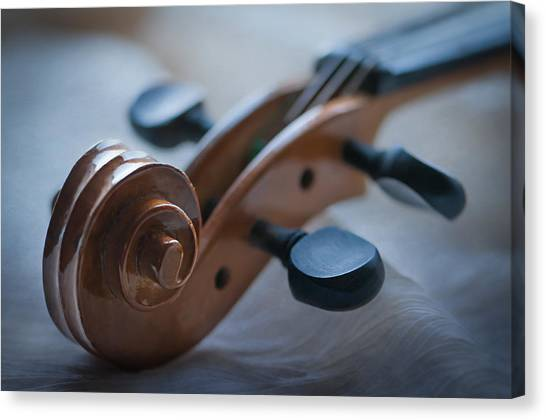 Cellos Canvas Print - The Scroll  by Maggie Terlecki