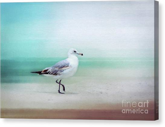 The Seagull Strut Canvas Print