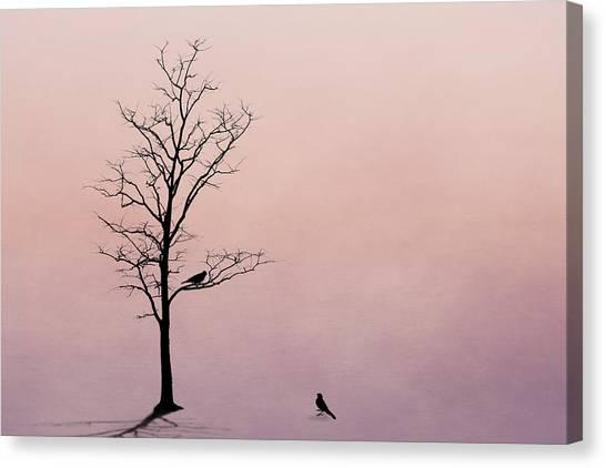 Lovebirds Canvas Print - The Serenade by Tom Mc Nemar