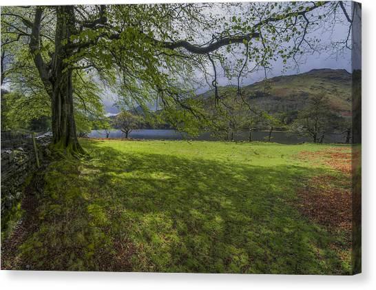 Llyn Gwynant Canvas Print - The Shade Of The Tree by Ian Mitchell
