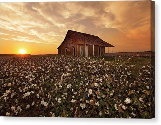 The Sharecropper Shack Canvas Print