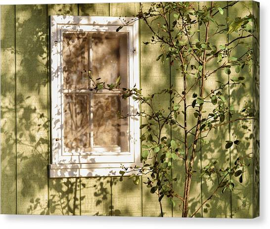 The Shed Window Canvas Print