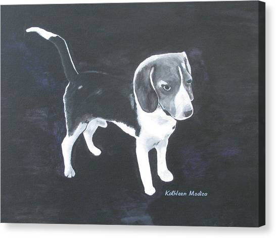 The Shy Beagle Canvas Print