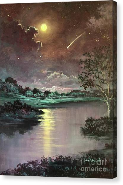 The Silence Of A Falling Star Canvas Print