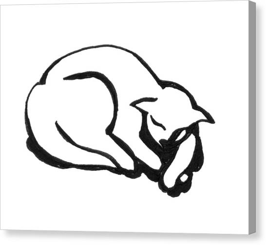 Canvas Print featuring the drawing The Sleeping Cat by Keith A Link