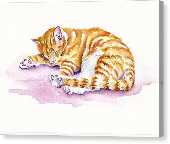 Cat Canvas Print - The Sleepy Kitten by Debra Hall