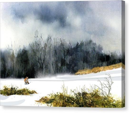 The Sly Fox Canvas Print