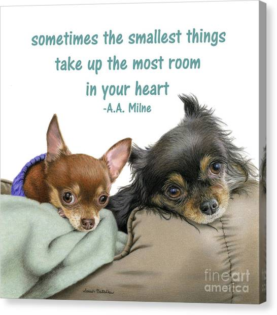 Chihuahuas Canvas Print - The Smallest Things Square Format by Sarah Batalka