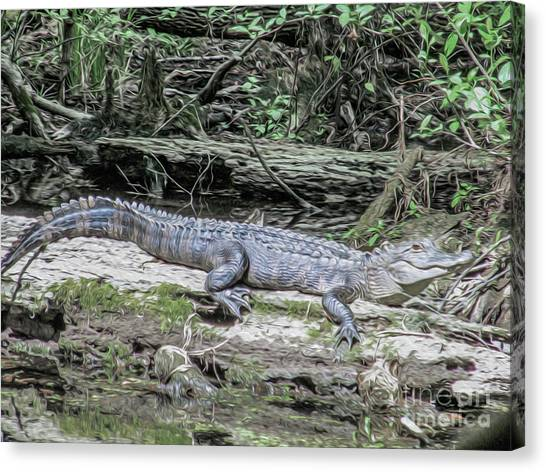 The Smiling Gator Canvas Print
