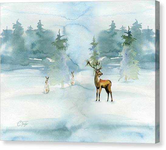 The Soft Arrival Of Winter Canvas Print
