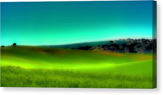 Rolling Hills Canvas Print - The Soft Rolling Hills Of The Palouse by David Patterson
