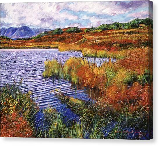 Marsh Grass Canvas Print - The Sound Of Wind Across The Lake by David Lloyd Glover