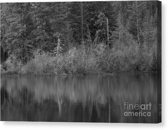 Canvas Print featuring the photograph The Spike by Jeni Gray