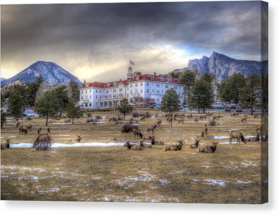 Canvas Print - The Stanley With Elk by G Wigler