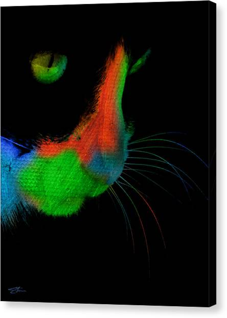 The Stare Canvas Print