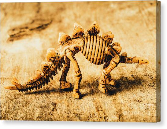Skeletons Canvas Print - The Stegosaurus Art In Form by Jorgo Photography - Wall Art Gallery
