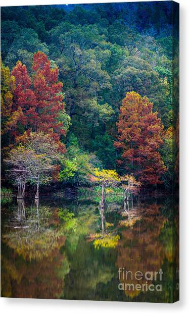 Beavers Canvas Print - The Stillness Of The River by Inge Johnsson
