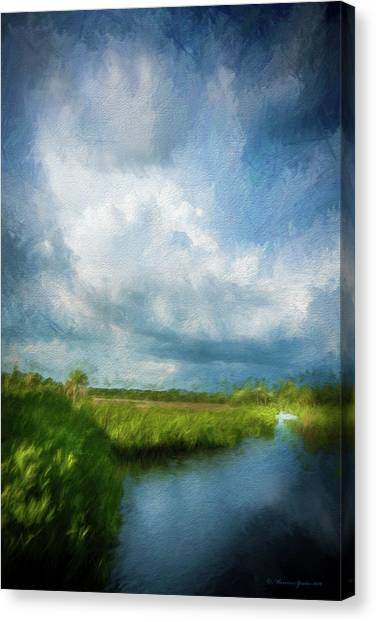 Florida Wildlife Canvas Print - The Storm by Marvin Spates