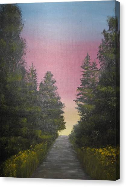 The Straight And Narrow Path Canvas Print by Terri Warner