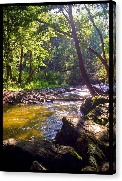 The Stream Canvas Print