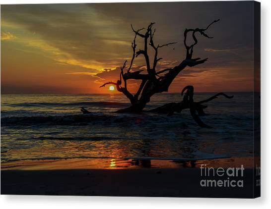 Fire Ball Canvas Print - The Struggle by Amanda Sinco