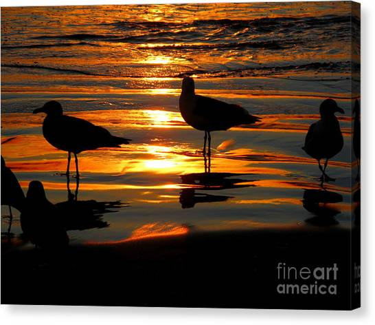 The Sun Has Nearly Set Canvas Print by PJ  Cloud