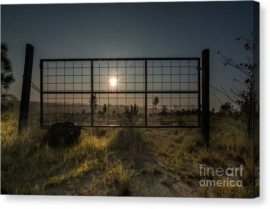 The Sun Is Free Canvas Print