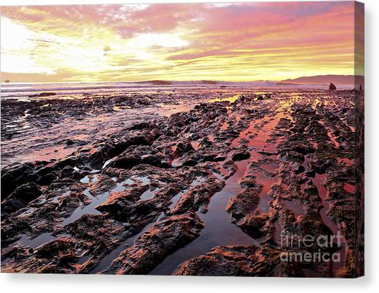 Ucsb Canvas Print - The Sun Sets Upon The Intertidal by Heidi Peschel