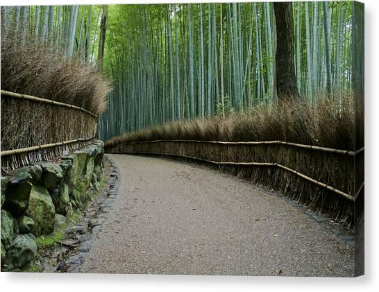 Sagano Bamboo Forest Canvas Print - The Surreal Arashiyama Bamboo Grove by Brian Kamprath