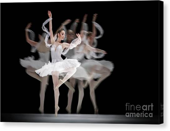 Canvas Print featuring the photograph The Swan Ballet Dancer by Dimitar Hristov