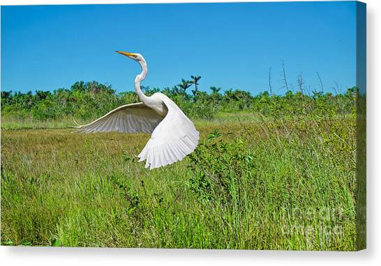 The Take Off Canvas Print
