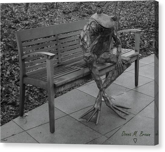 The Thinking Frog Canvas Print