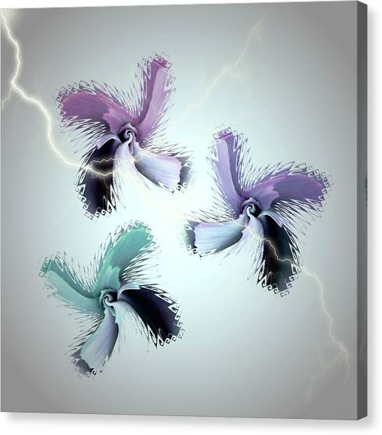 The Thunderbolt Dance Of Rose Butterflies - 3 Canvas Print by Jacqueline Migell