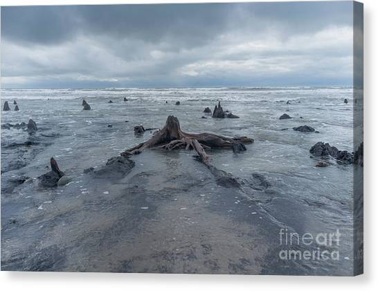 The Tide Comes In Over The Bronze Age Sunken Forest At Borth On The West Wales Coast Uk Canvas Print